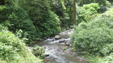 malesia indonesia 317